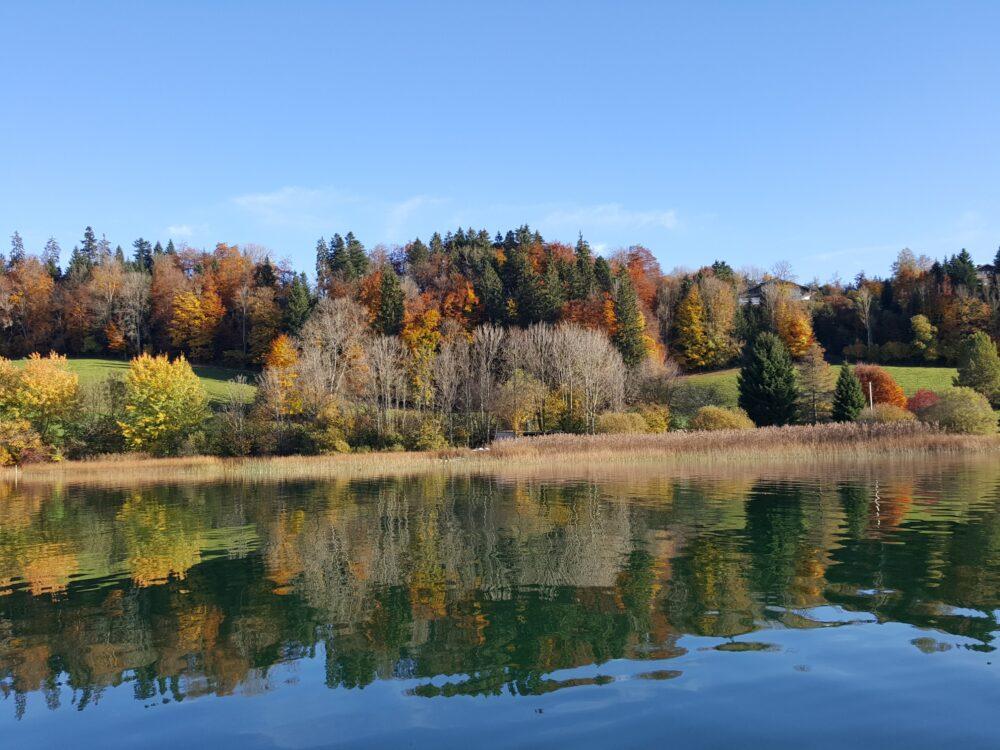 Lac de Saint-Point-Lac