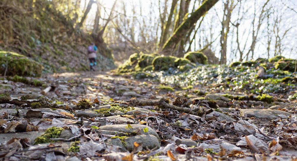 Une autre voie dite romaine croisera votre itinéraire, à Montagna-le-Reconduit