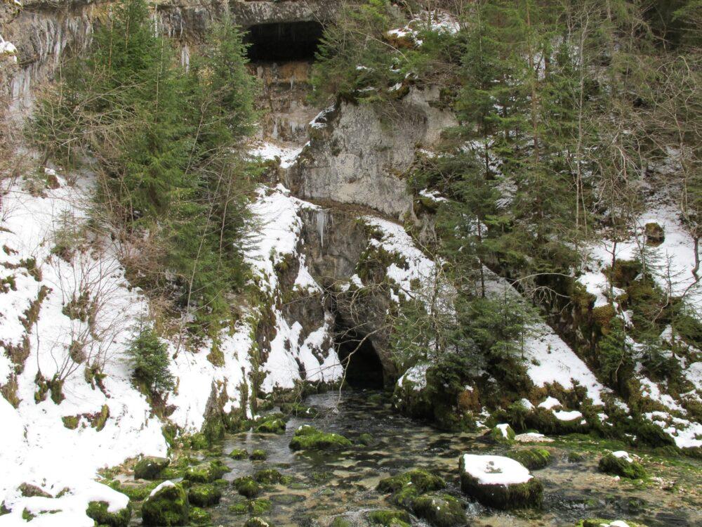 Source du Doubs sous la neige