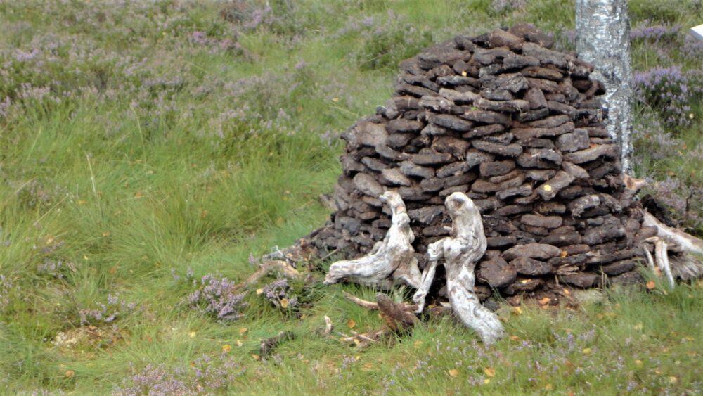 Tourbe en briquettes