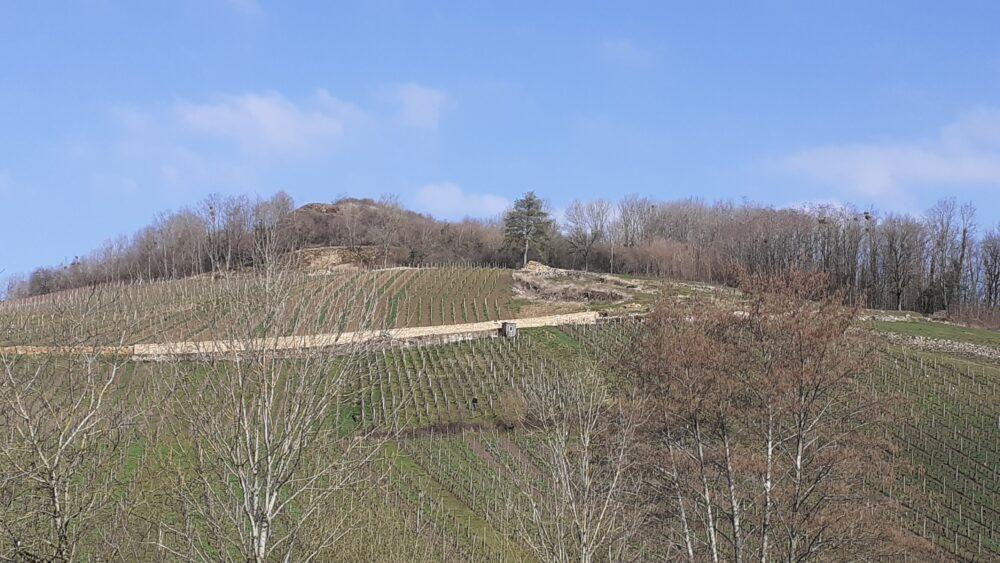 Entre Courbouzon et Montaigu