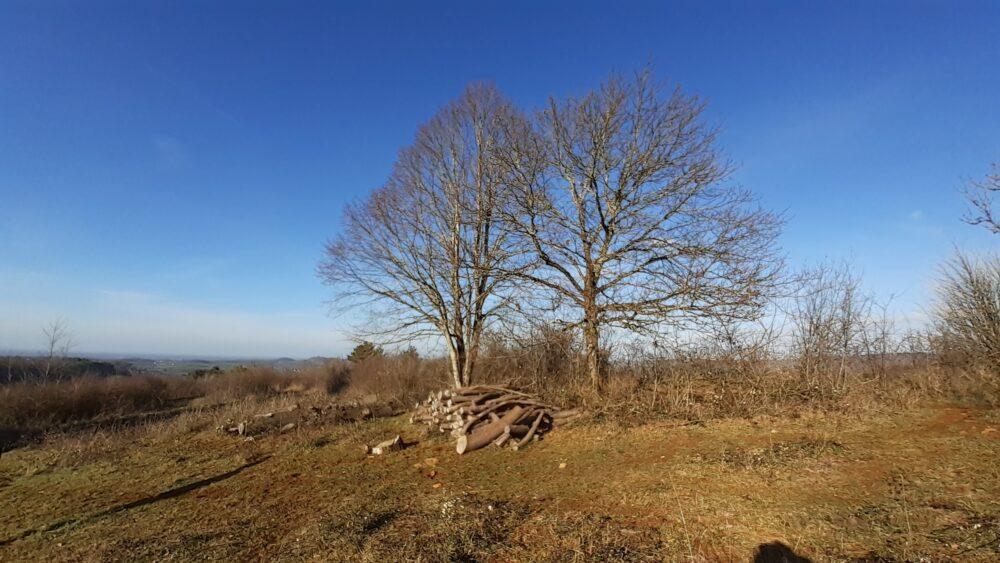 Vue hivernale du plateau de Mancy