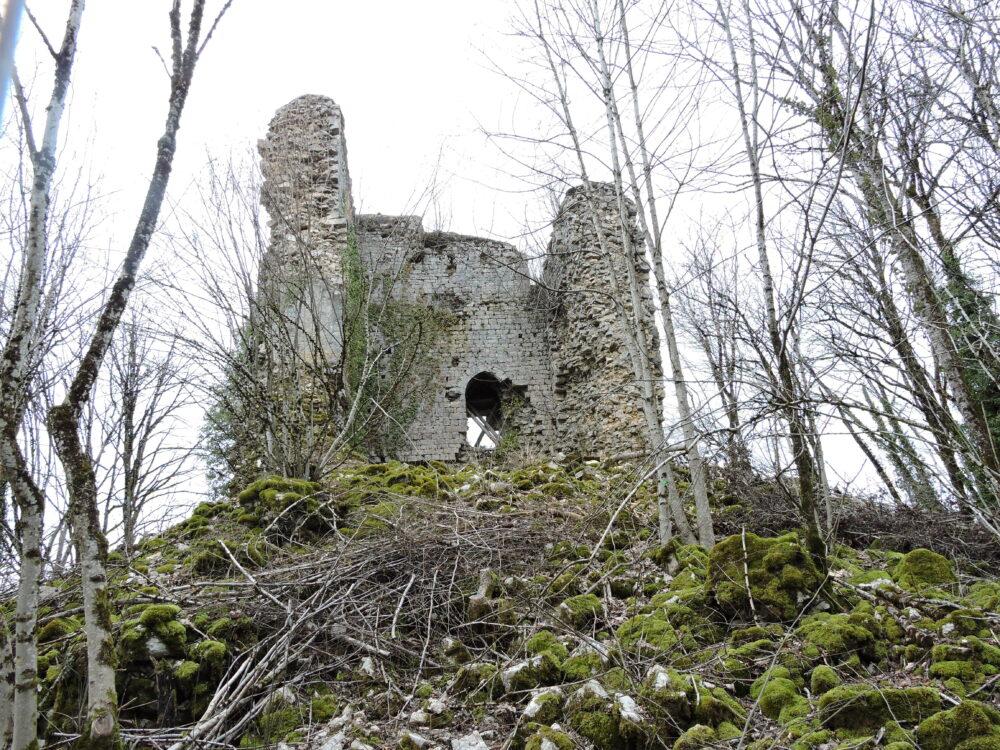 Donjon du château de Montrond