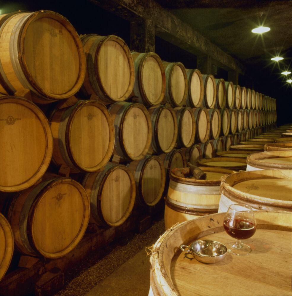 Des vins à découvrir en Tournugeois et Clunisois