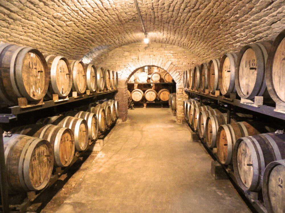 Des vins à découvrir