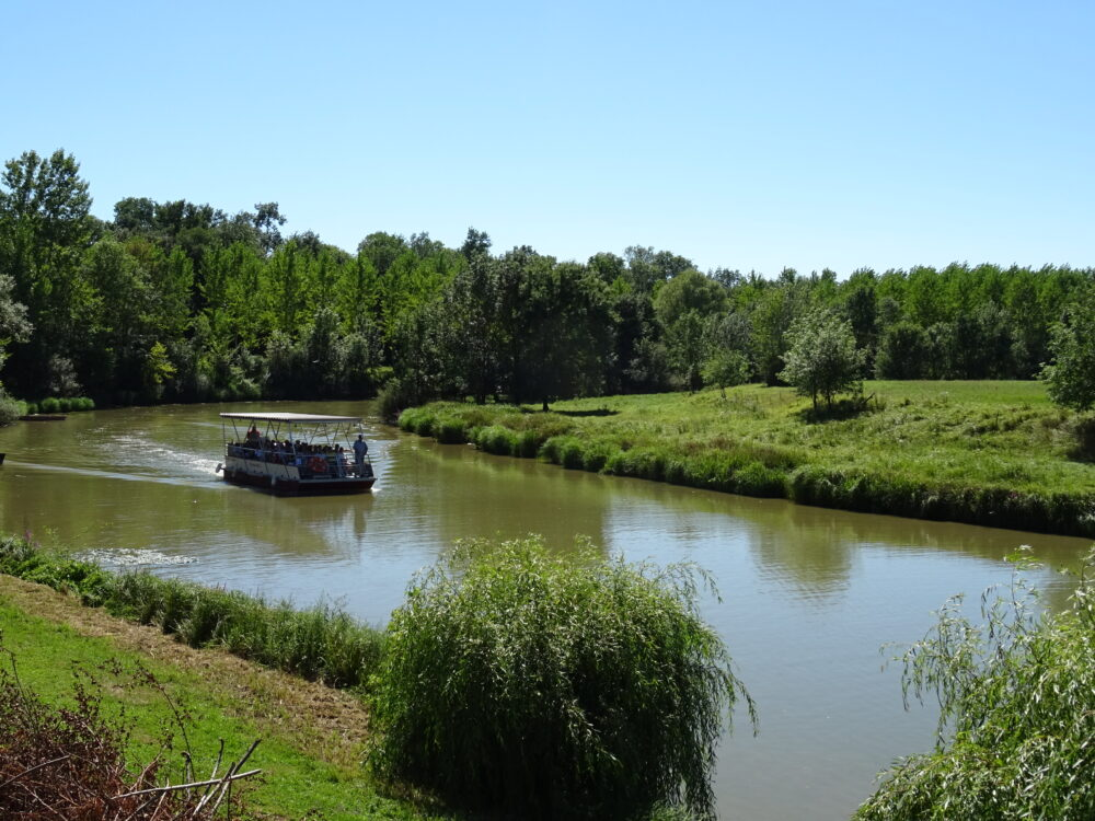 La Réserve naturelle de la Truchère