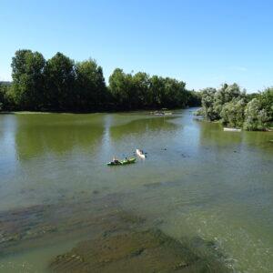 ViaCluny.fr La Truchère Seille Bourgogne du Sud découvrir balades croisières