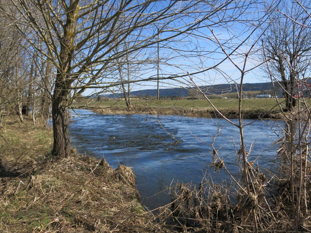 Le Drugeon près de sa confluence avec le Doubs