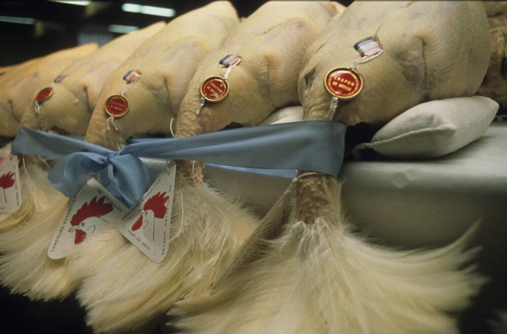 Les Glorieuses de Bresse, concours de volailles fines