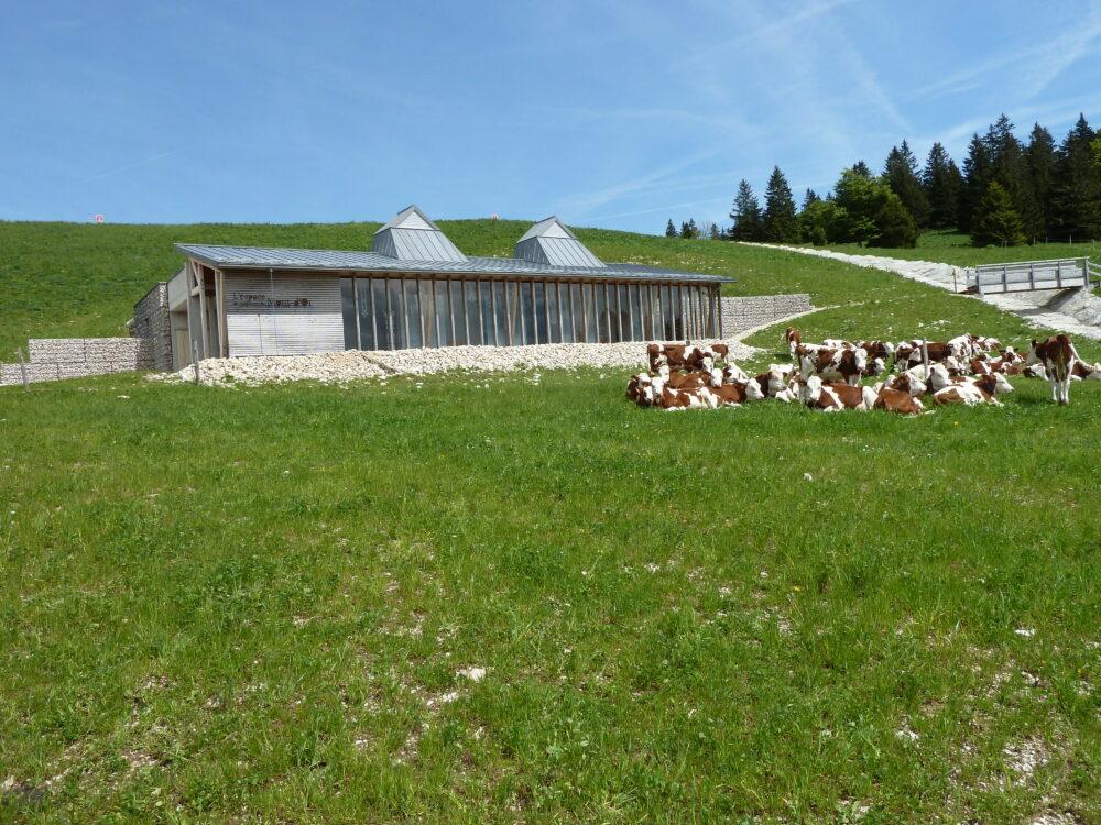 L'espace muséographique consacré au Mont-d'Or