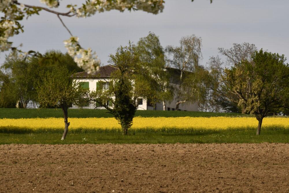 L'ancien prieuré de Bevaix