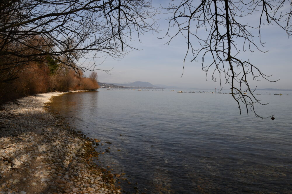La plage de Vaumarcus