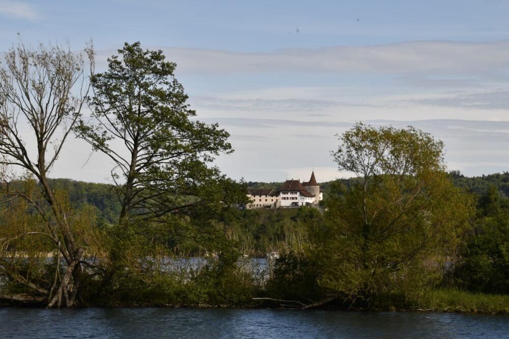 Le château-musée d'Erlach